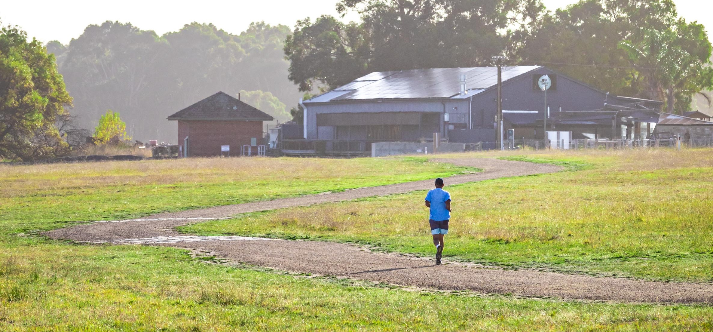 Runner at Myponga